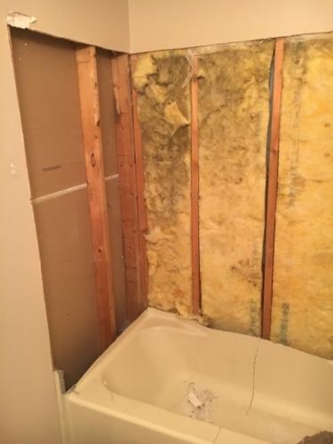 12 Bathroom In Progress